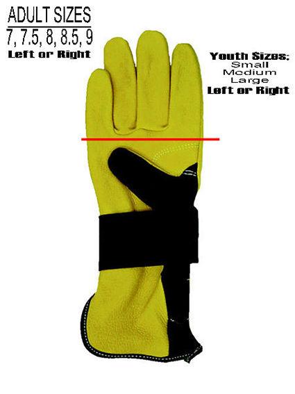 Glovechart